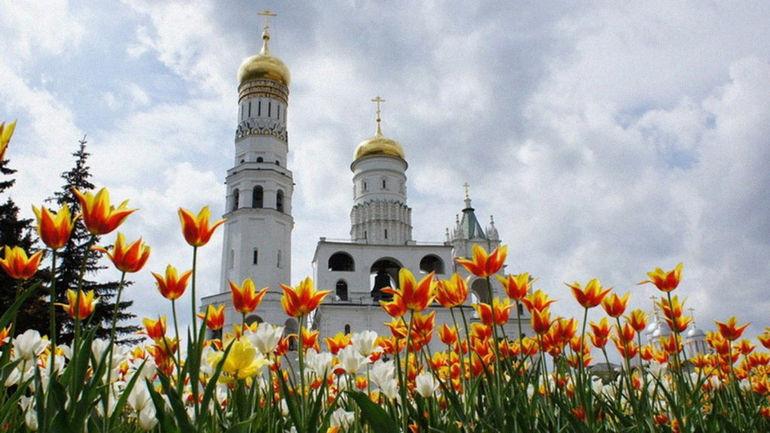 5 идей для майских выходных от TVIL.ru