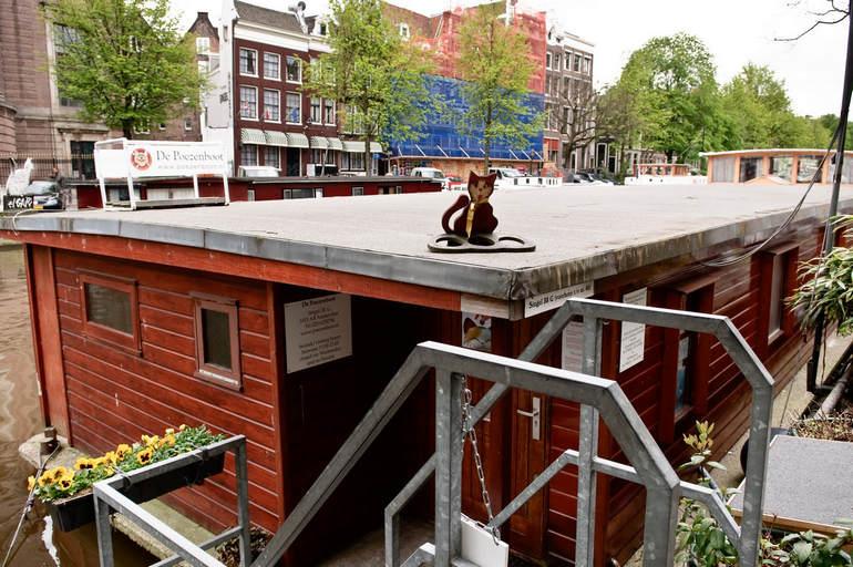 De Poezenboot: плавучий приют для кошек в Амстердаме