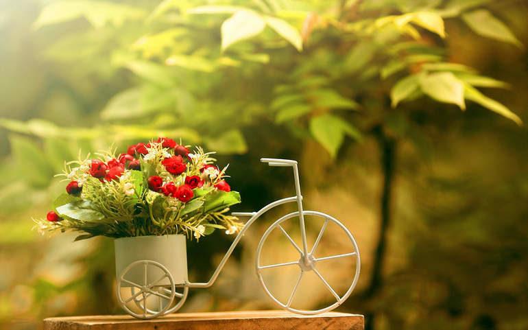 Как заказать цветы с доставкой в Украине?