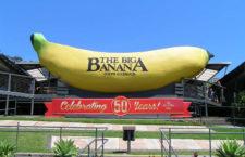 Самый большой банан в мире в городе Харбор, Новый Южный Уэльс