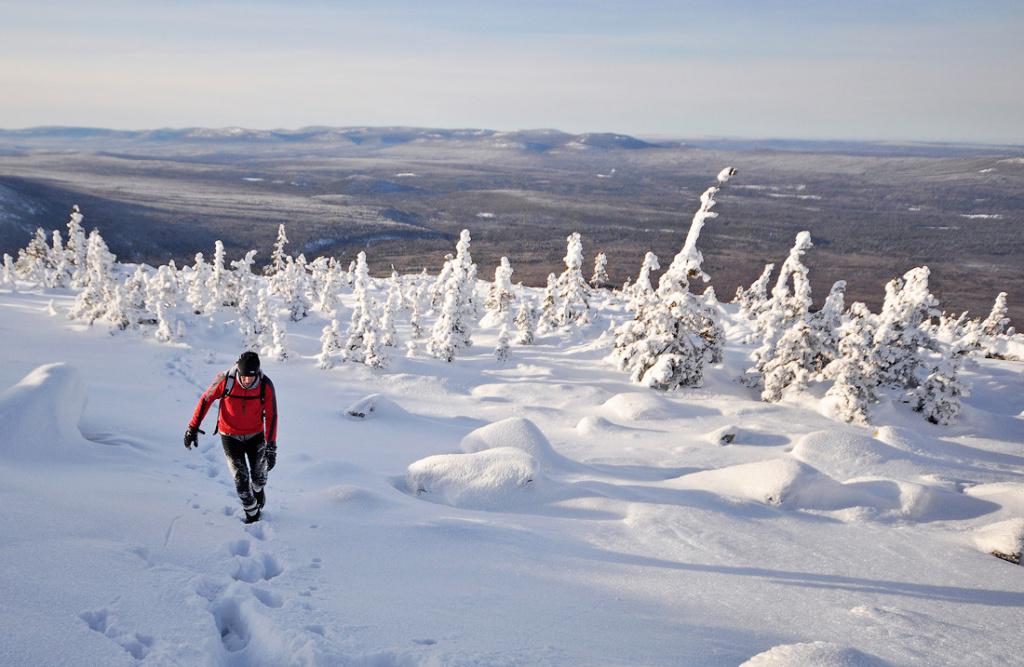 Как не погибнуть в походе зимой
