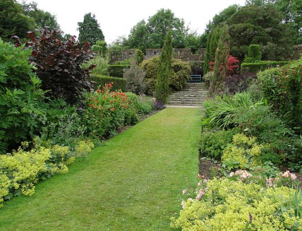 Хорошо ухоженная алея и цветы на територии сада