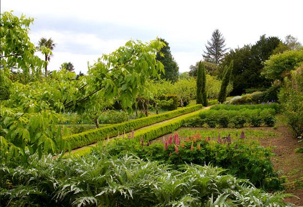 Прекрасные Сады замка Лисмор рядом с ирландским замком