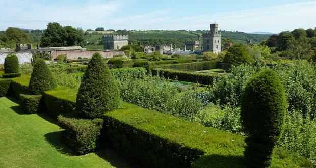 Аккуратно постриженные кусты с видом на ирландский замок