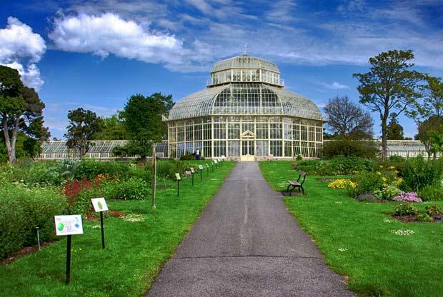 Национальный ботанический сад в Дублине. Топ-10 достопримечательностей Дублина. Что стоит посмотреть в столице Ирландии