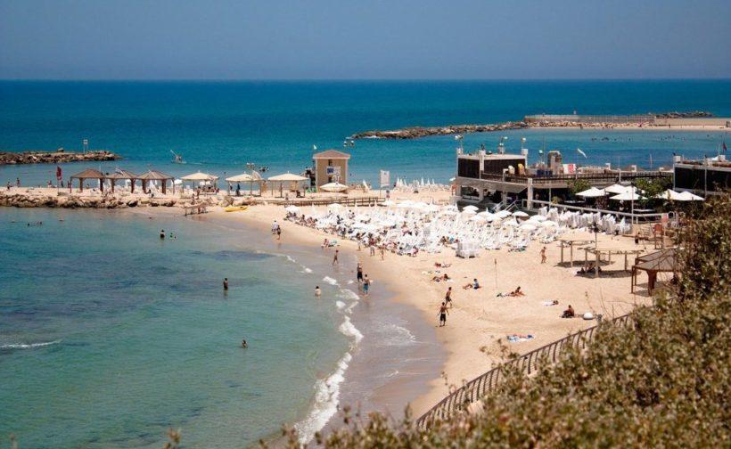 Сезон медуз в Израиле