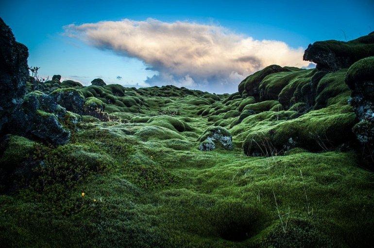 лавовые поля исландии