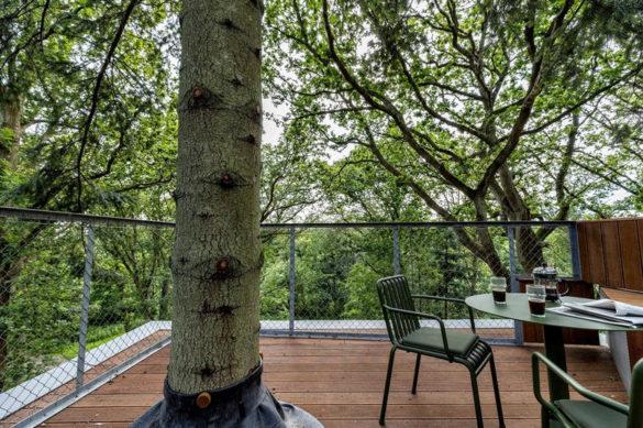 Løvtag: отельный номер на дереве (Дания)